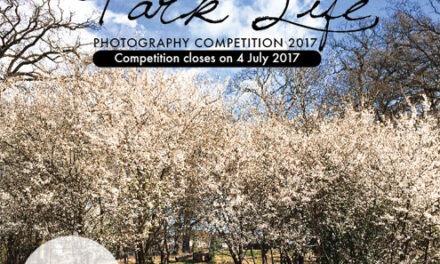 Park Life – Photo Competition