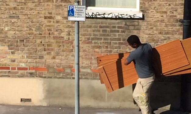 HEATWAVE CAUSES FLY TIP EPIDEMIC