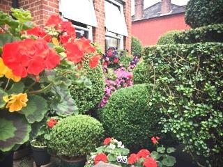 Winning topiary garden
