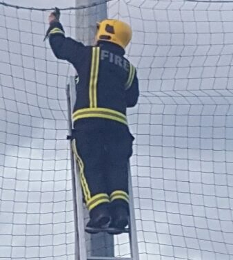 FIREFIGHTERS RESCUE PARAKEET!