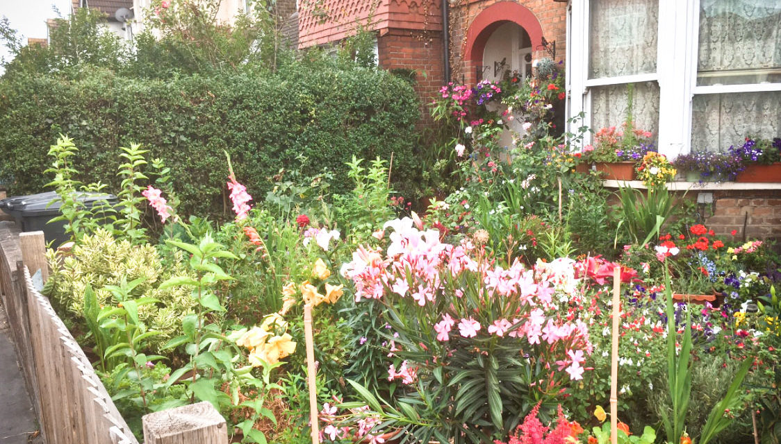 IN BLOOM RETURNS FOR A THIRD YEAR