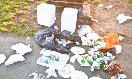 PARKS CONTRACTOR IDVERDE BINNED