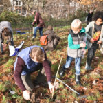JOIN THE DRIVE TO PLANT MORE TREES