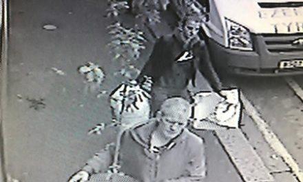 Thieves pilfer plants in night-time raids