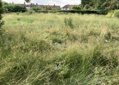 Trumble Gardens: formal gardens no more