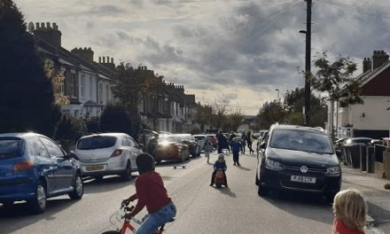 Council to Charge Children to Play